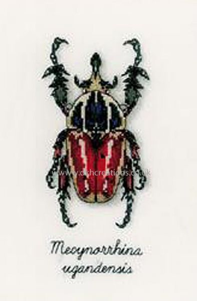 Red Beetle Cross Stitch Kit
